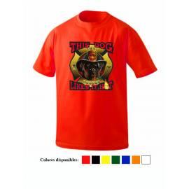 Placa Insignia del Guarda...